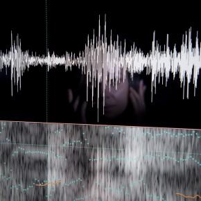 Kritische Blicke auf die forensische Phonetik